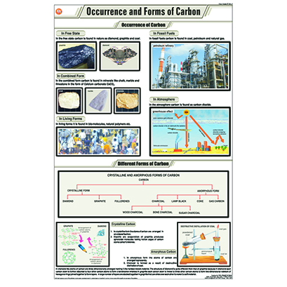 STC10 Occurence & Forms of Carbon